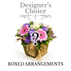 Designers Choice Boxed Arrangement