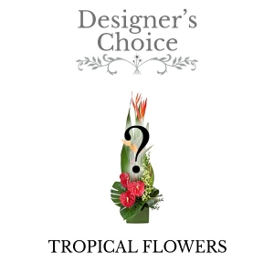 Designers Choice Tropicals