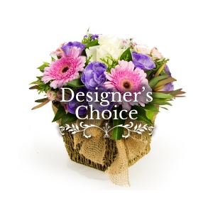 Same Day Flower Delivery - Designer's Choice