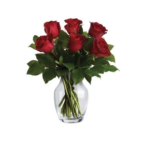 Endless Love 6 Red Roses
