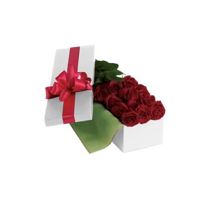 12 Roses For You Boxed
