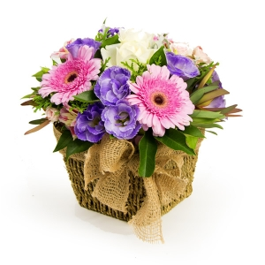 Lizzy Boxed Arrangement